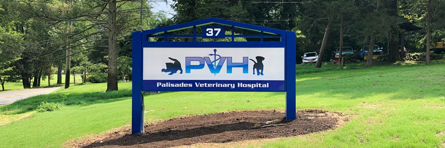 rockland county vet